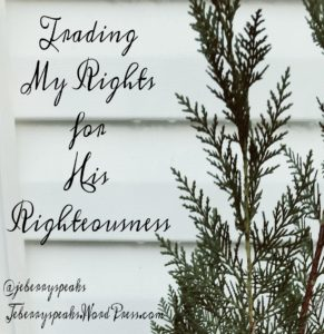 Green branches against white siding | Trading My Rights for His Righteousness